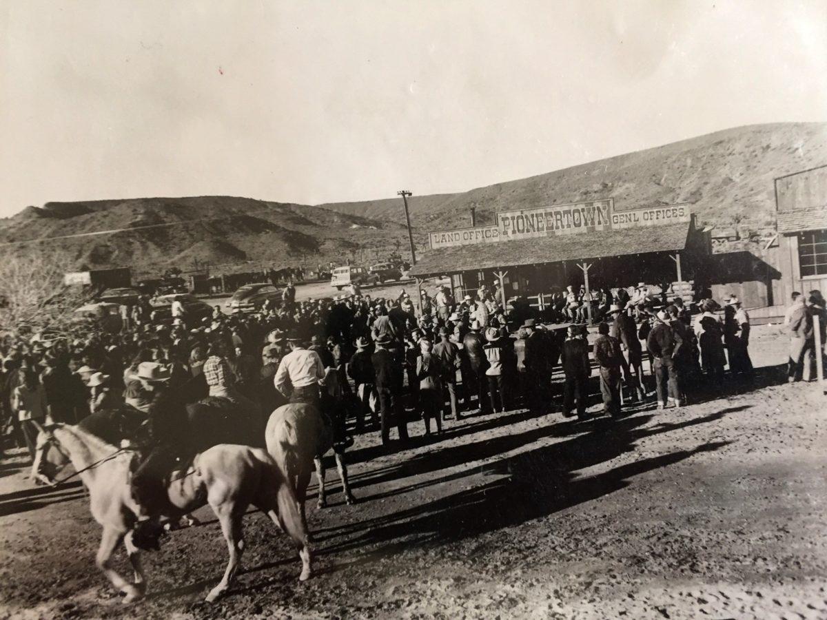 landoffice-horses